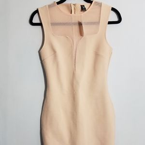 NWT sexy Windsor nude pink bodycon dress, S